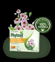 Phytoxil Pastilles Gorge Pastilles Adulte Enfant +12 Ans B/20 à QUINCAMPOIX