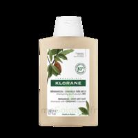 Klorane Beurre Cupuaçu Bio Shampoing Cheveux Très Secs 200ml