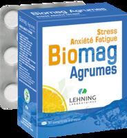Lehning Biomag Comprimés à Croquer Agrumes B/90 à QUINCAMPOIX