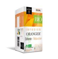 Dayang Oranger Bio 20 Infusettes