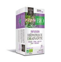 Dayang Hépatique Drainante Bio 20 Infusettes à QUINCAMPOIX