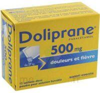 DOLIPRANE 500 mg Poudre pour solution buvable en sachet-dose B/12 à QUINCAMPOIX