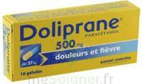 DOLIPRANE 500 mg Gélules B/16 à QUINCAMPOIX