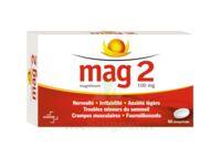 MAG 2 100 mg Comprimés B/60 à QUINCAMPOIX