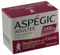 ASPEGIC ADULTES 1000 mg, poudre pour solution buvable en sachet-dose 15 à QUINCAMPOIX