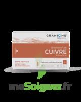 GRANIONS DE CUIVRE 0,3 mg/2 ml S buv 30Amp/2ml à QUINCAMPOIX
