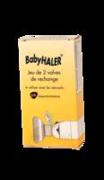 Babyhaler, Bt 2 à QUINCAMPOIX