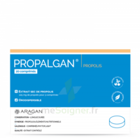 Aragan Propalgan Comprimés orodispersibles adulte B/20 à QUINCAMPOIX