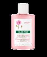 Klorane Shampoing Apaisant & Anti-irritant à La Pivoine 25ml à QUINCAMPOIX
