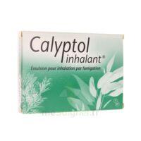 CALYPTOL INHALANT, émulsion pour inhalation par fumigation à QUINCAMPOIX