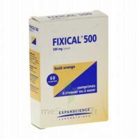 FIXICAL 500 mg, comprimé à croquer ou à sucer à QUINCAMPOIX