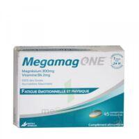 megamag one à QUINCAMPOIX