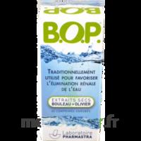 B O P, comprimé enrobé à QUINCAMPOIX