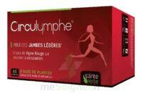 Santé Verte Circulymphe Triple Actions B/60 à QUINCAMPOIX