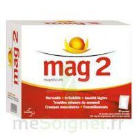 MAG 2, poudre pour solution buvable en sachet à QUINCAMPOIX