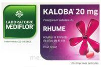 KALOBA 20 mg Comprimé pelliculé Plq/21 à QUINCAMPOIX