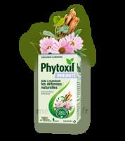 Phytoxil Immunité Gélules B/40 à QUINCAMPOIX