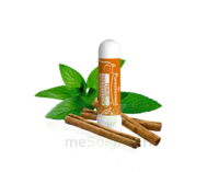 PURESSENTIEL TONUS ENERGIE VITALITE Inhalation nasal tonus 4 huiles essentielles à QUINCAMPOIX