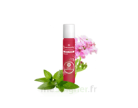 PURESSENTIEL ANTI-PIQUE Roller 11 huiles essentielles à QUINCAMPOIX