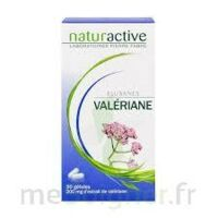 ELUSANES VALERIANE 200 mg, gélule Pilul/30 à QUINCAMPOIX