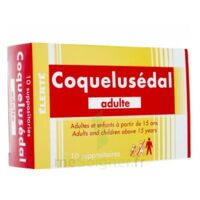 COQUELUSEDAL ADULTES, suppositoire à QUINCAMPOIX