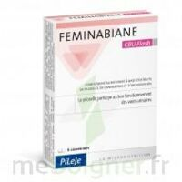 Feminabiane CBU Flash Comprimés à QUINCAMPOIX