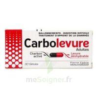 CARBOLEVURE Gélules adulte Plq/30 à QUINCAMPOIX