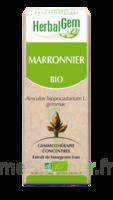 Herbalgem Marronnier Macérat bio 30ml à QUINCAMPOIX