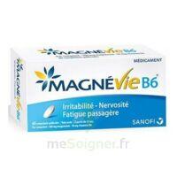 Magnevie B6 100 mg/10 mg Comprimés pelliculés Plaq/60 à QUINCAMPOIX