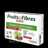 Ortis Fruits & Fibres Forte Cube à mâcher B/24 à QUINCAMPOIX