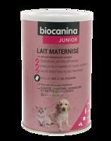 Biocanina Lait poudre maternisé B/400g à QUINCAMPOIX