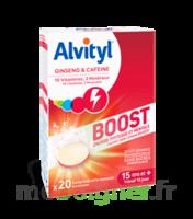 Alvityl Boost Comprimés B/20 à QUINCAMPOIX