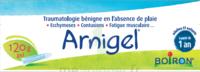 Boiron Arnigel Gel T/120g à QUINCAMPOIX