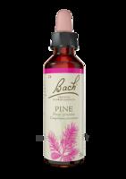 Fleurs De Bach® Original Pine - 20 Ml à QUINCAMPOIX