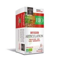 Dayang Articulation Bio 20 Infusettes à QUINCAMPOIX