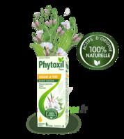 Phytoxil Toux Sans Sucre Sirop Adulte Enfant +2 Ans Fl/120ml à QUINCAMPOIX