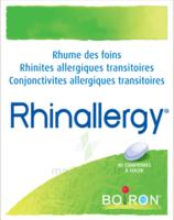 Boiron Rhinallergy Comprimés B/40 à QUINCAMPOIX