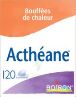 Boiron Acthéane Comprimés B/120 à QUINCAMPOIX